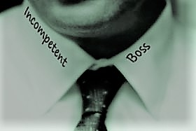 The Peter Principle From Competence to Incompetence