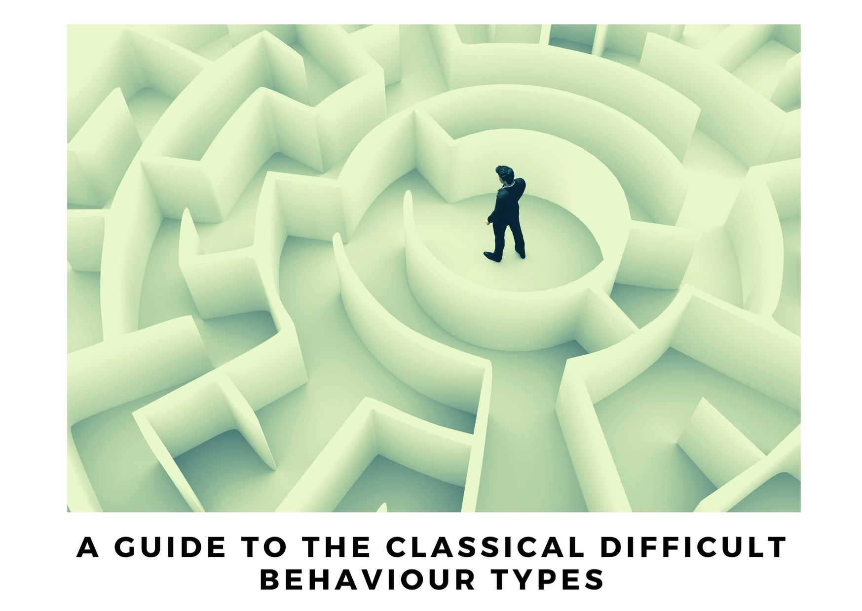 A guide to the classical difficult behaviour types